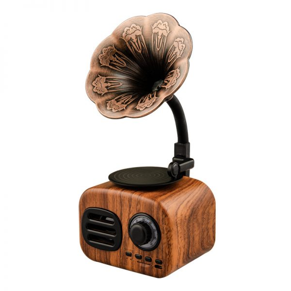 MP3 Bluetooth Phonograph